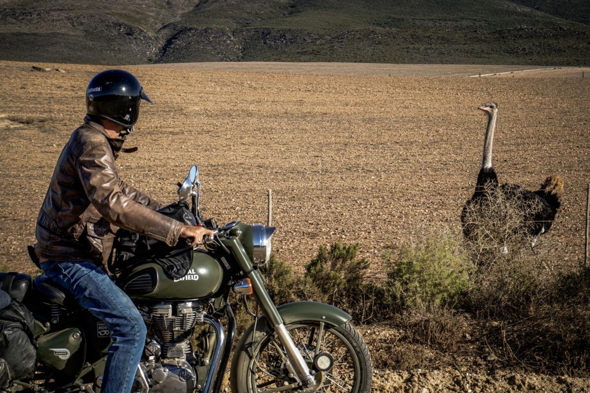 un voyage moto en afrique du sud gagner avec la mutuelle moto magazine leader de l. Black Bedroom Furniture Sets. Home Design Ideas