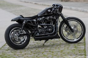 Battle of the kings Harley-Davidson : un Sportster Iron (...)