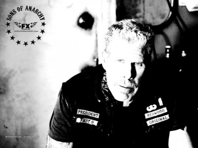 DVD Sons of Anarchy : Ron Perlman