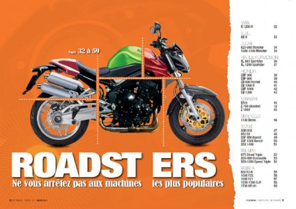 Hors série Occasion 2011 : les roadsters