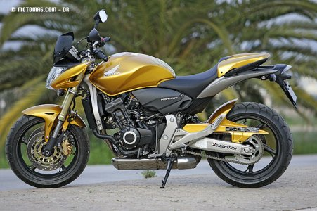 Honda CB F 600 Hornet : options